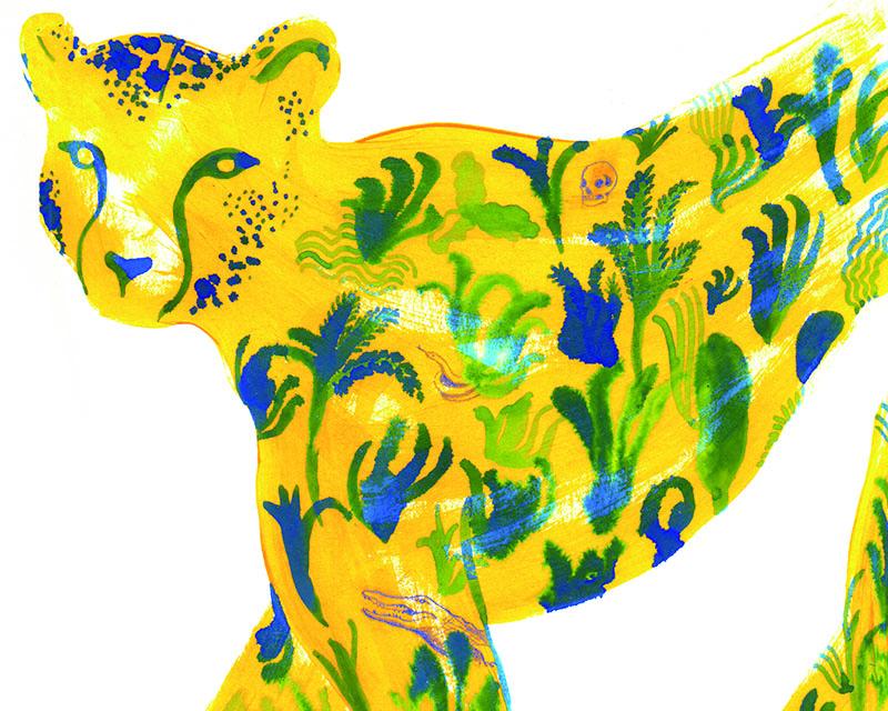 Tigre The FLR